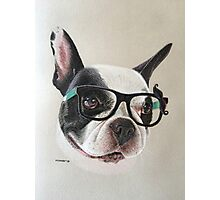 Mia the quirky French Bulldog! Photographic Print
