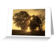 Misty Rays Greeting Card