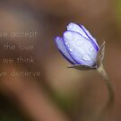 We accept the love we think we deserve by netza