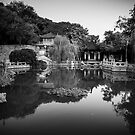 Chinese garden by Andrea Rapisarda
