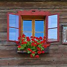 Red Window with Flower Box. by Lee d'Entremont