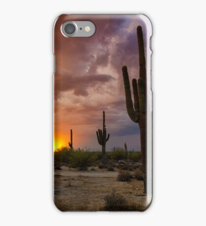 The Last Light of the Evening  iPhone Case/Skin