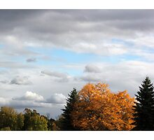 Fall Feelling 2 Photographic Print