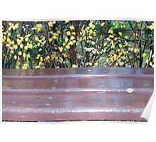 Wooden bench after a rain Poster