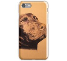 Nemo the beautiful brown labrador iPhone Case/Skin