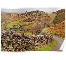 Road in North Wales Poster