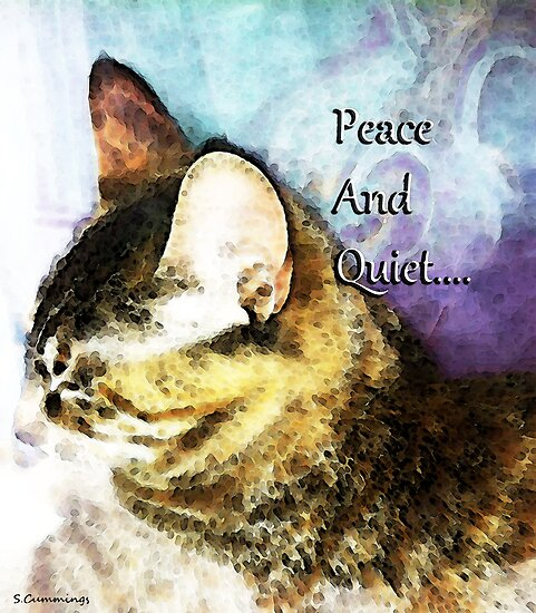 Cat Art - Peace And Quiet by Sharon Cummings