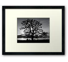 Lone Oak Silhouette Framed Print
