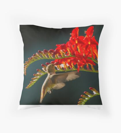 Hummingbird Eating at Flower Throw Pillow