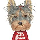 Keri (Yorkshire Terrier) by Danny Gordon