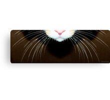 Cat Art - Super Whiskers Canvas Print