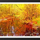 Multi-Colored Michigan - (Framed) by Deb  Badt-Covell
