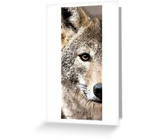Wolves Art - Lone Wolf Greeting Card