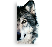 Wolf Art - Timber Canvas Print