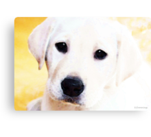 Puppy Art - Lil Yellow Canvas Print
