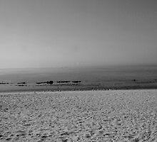 surfless paradise 3 by OTOFURU