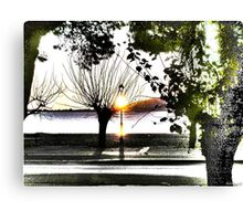 surrealistic arboreal morning Canvas Print