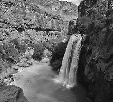 Havasu Falls by Sylwester Zacheja