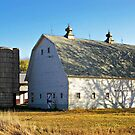 On the Farm by Greg Belfrage
