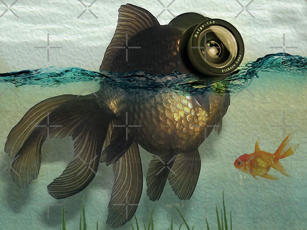 Fish eye lens by vinpez