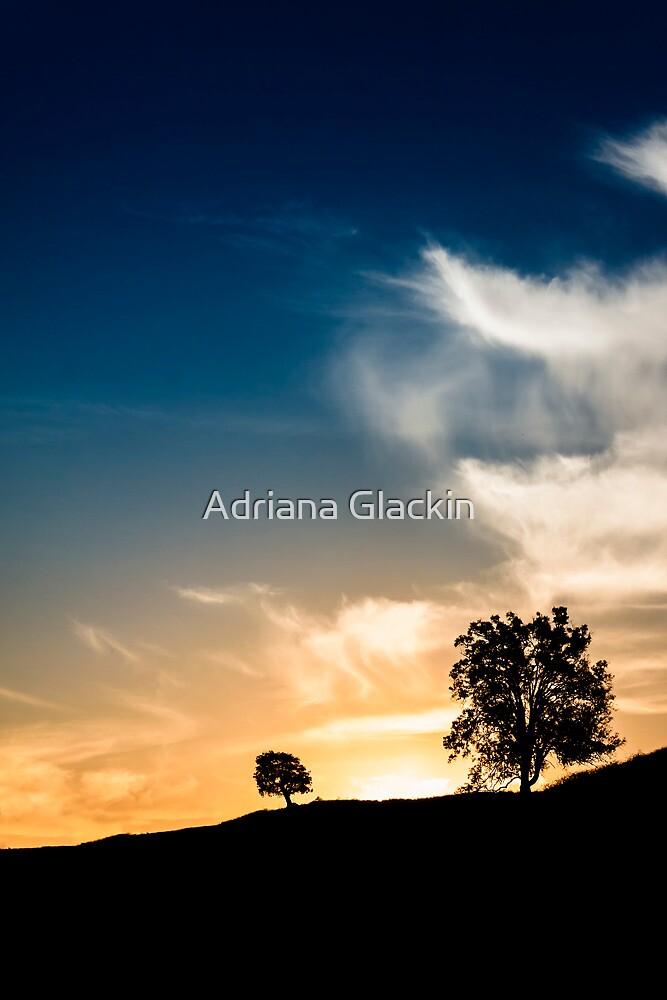 ~ future me ~ by Adriana Glackin