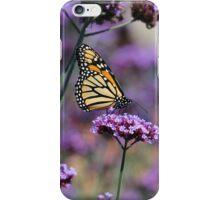 Monarch on Mauve iPhone Case/Skin