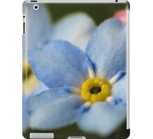 Forget-Me-Nots 12 iPad Case/Skin
