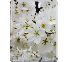 Cherry Blossoms 3 iPad Case/Skin