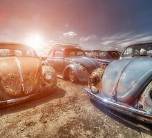 Bugs in the Sun by UKGh0sT