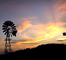 Country Sundown - Toowoomba Qld Australia by Beth  Wode