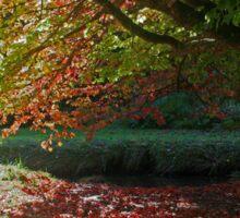 Autumn Colour, Bournemouth Gardens Sticker