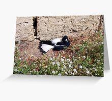 Magpie - 07 11 12 - Nine Greeting Card