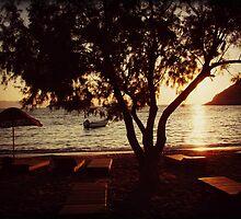 Sunset Paradise by Michael  Sawyer