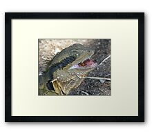 Tongue Twister Framed Print