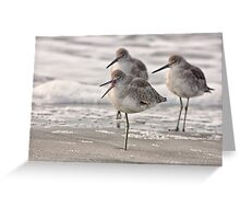 Shore Bird Yoga, Ocean Isle Beach, NC Greeting Card