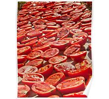 Fresh Tomatoes Under Hot Sun To Dry Poster