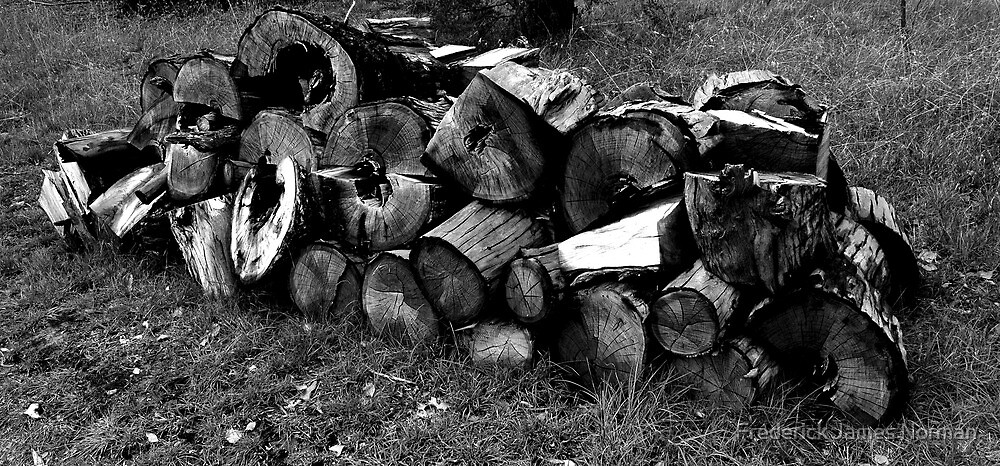 Log pile by Frederick James Norman