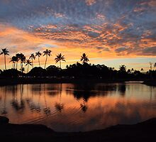Ala Moana Sunset by djphoto