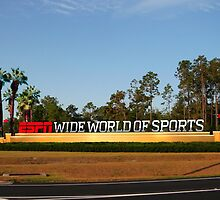 Wide World Of Sports orlando hotels by jhonstruass