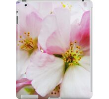 Cherry Blossoms 8 iPad Case/Skin