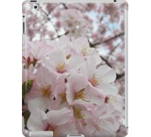 Cherry Blossoms 13 iPad Case/Skin