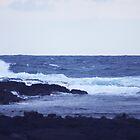 East Coast Waves by Loisb