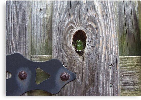 Sneak Peek by Monnie Ryan