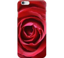 Blooming Rose Flower, Petals - Red iPhone Case/Skin