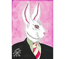 Well Dressed Bunny Photographic Print