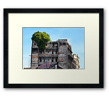 Nature Overcomes Framed Print