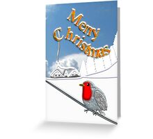 Merry Christmas from the Baby Robin Greeting Card