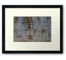 Mawson Lakes Stilts Framed Print