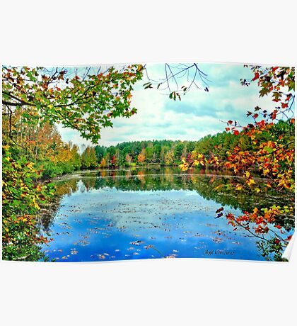 Fall Pond 2 (HDR) Poster