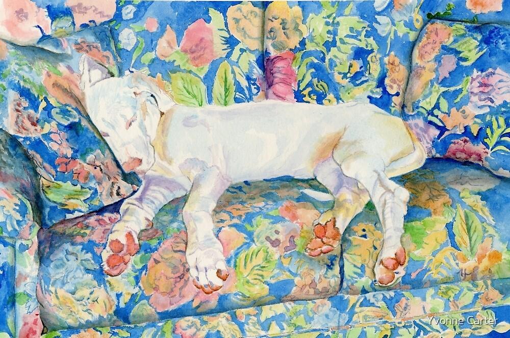 Zoe the Great Dane Pup #2 by Yvonne Carter